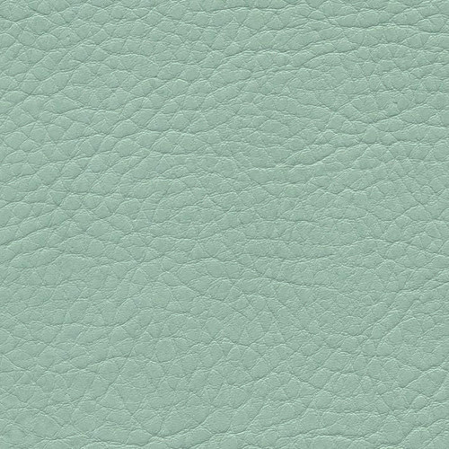 Simili Cuir Grano Grande Menthe - W0627