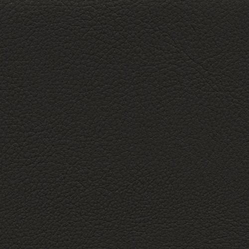 Simili Cuir Respirante Noir - W0213