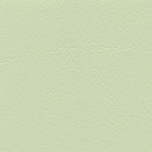 Simili Cuir Venato Pistache - W0716